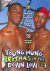 Young Hung Brothas On The Down Low #3 Porn Movie
