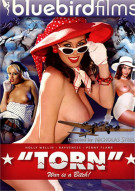 &quot;Torn&quot; Porn Movie