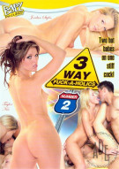 3 Way Fuck-A-Holics 2 Porn Movie