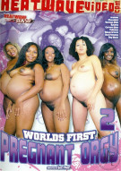 Worlds First Pregnant Orgy 2 Porn Movie